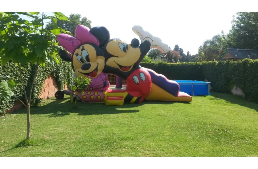 P-19 Mickey y Minnie